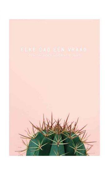Book - Elke dag een vraag - Cactus