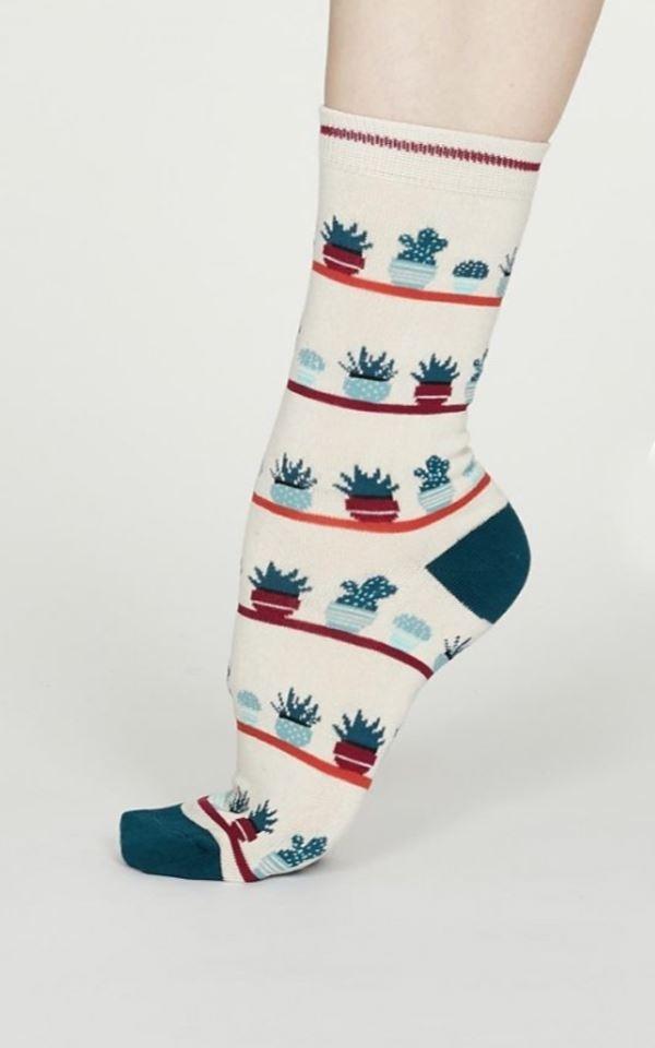 Sock Pack Yogi