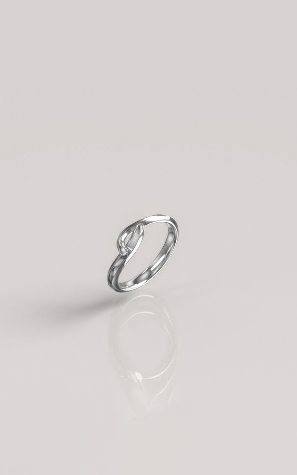 Ring Shaped - Silver