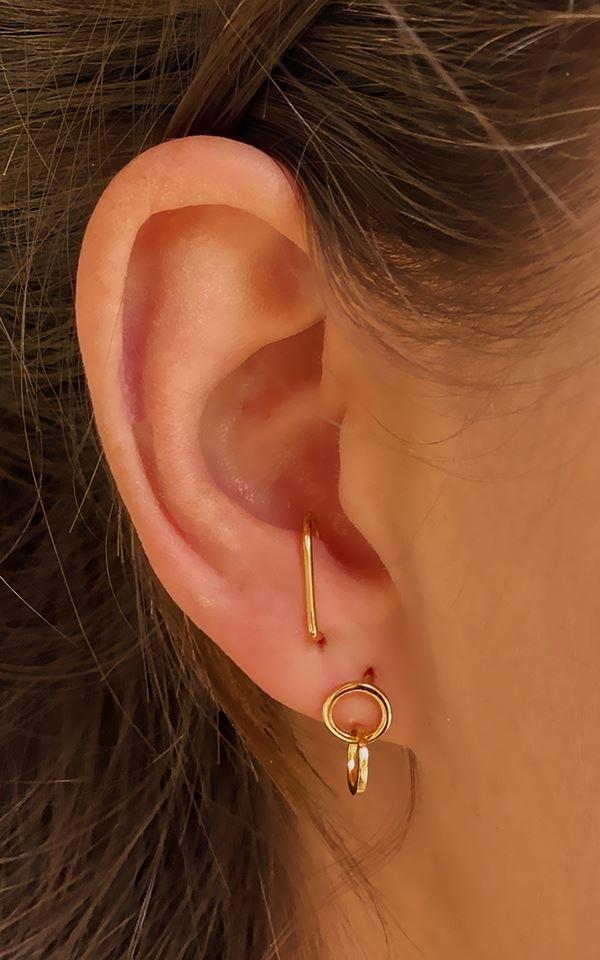 Earrings Up