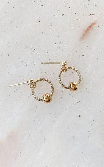 Earrings Twist Circle