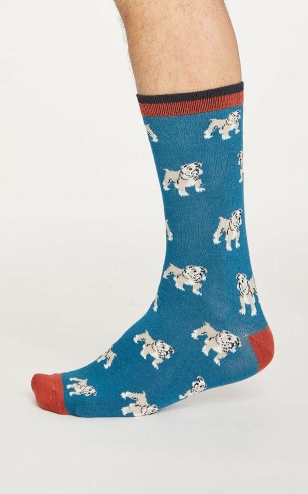 Socks Hound