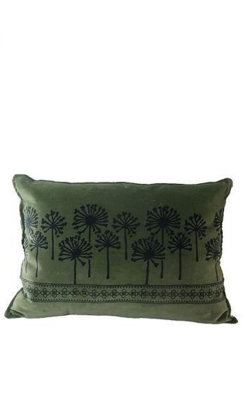 Cushion Dandelion