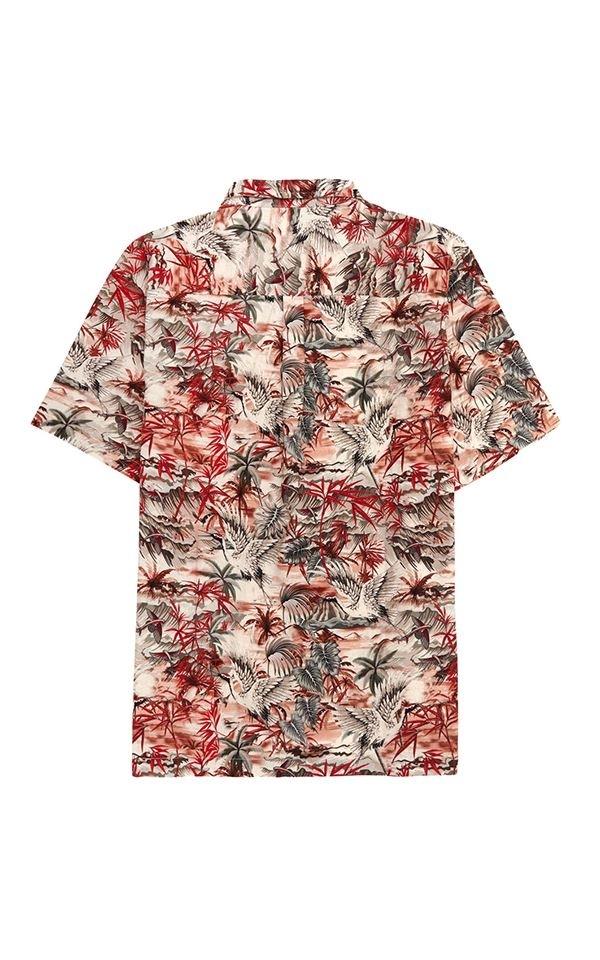 Shirt Dingwalls