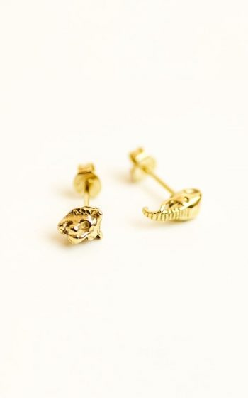 Earrings Animal Attraction